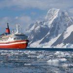 Conocer los mamíferos marinos de la Antártida
